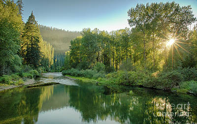 Photograph - North Fork Sun by Idaho Scenic Images Linda Lantzy