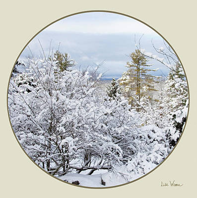 Digital Art - Northeast Usa Photography Button by Lise Winne