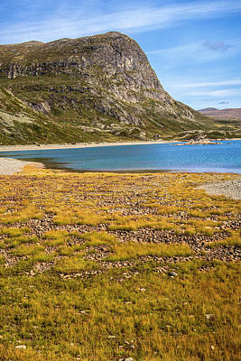 Photograph - Norwegian scenery by Mike Santis