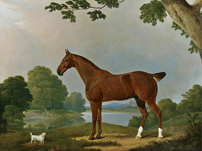 James Barenger Painting - Aconbury A Hunter And Coaxer A Terrier In A Landscape by James Barenger