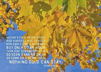 Photograph - Nothing Gold Can Stay Quote by JAMART Photography