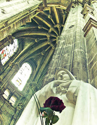 Photograph - Notre Rose De Paris by David Perea