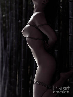 Photograph - Nude Woman Tied To Bamboo With Bondage Ropes In Forest At Night by Oleksiy Maksymenko