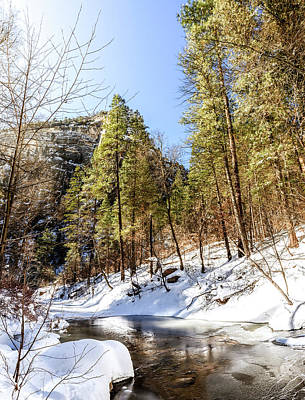 Photograph - Oak Creek In Winter by Alexey Stiop
