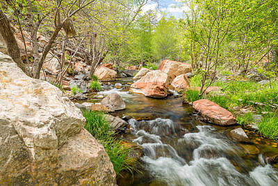 Cathedral Rock Photograph - Oak Creek by Jon Manjeot