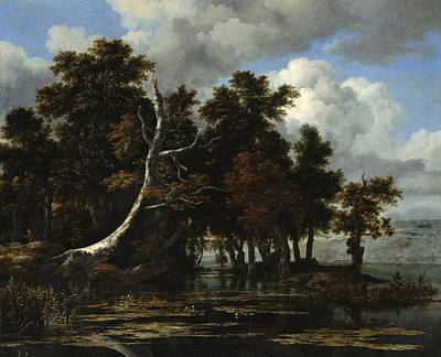 Painting - Oaks At A Lake With Water Lilies by Jacob van Ruisdael