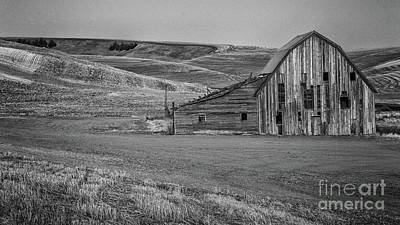 Photograph - Old Barn by John Greco