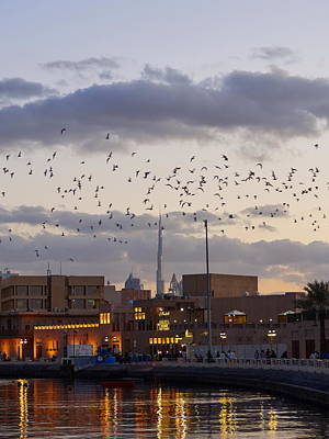 Photograph - Old Dubai by Jouko Lehto