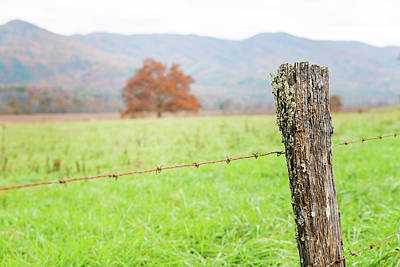 Photograph - The Old Fence Post by Victor Culpepper