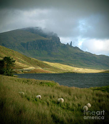 Painting - Old Man Of Storr by Louise Fahy