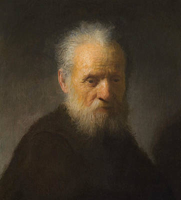 Old Man With Beard Painting - Old Man With Beard by Rembrandt