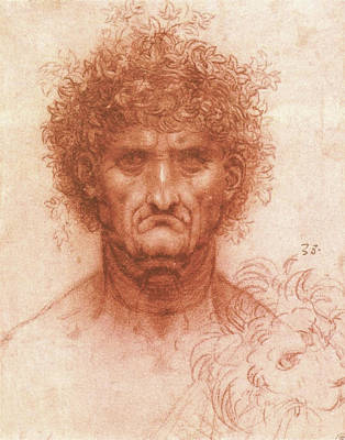 Closeup Drawing - Old Man With Ivy Wreath And Lion's Head by Leonardo da Vinci