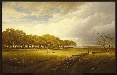 1833 Painting - Old Orchard At Newport by William Trost Richards