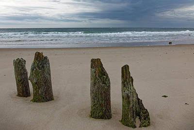 Photograph - Old Pilings by Steve Gravano