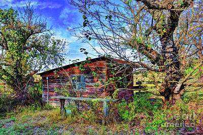 Photograph - Old Shack by Savannah Gibbs