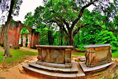 Photograph - Old Sheldon Church Ruins Beaufort Sc by Lisa Wooten