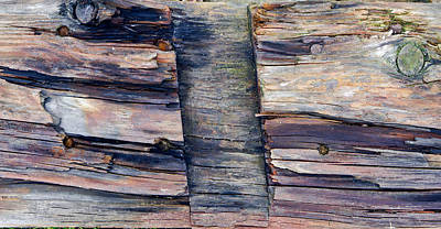 Panel Photograph - Old Wood by Tom Gowanlock