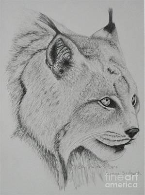Olympic Park Lynx Original