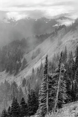 Photograph - Olympic Range From Hurricane Ridge by Peter J Sucy