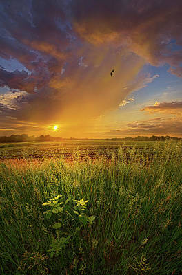 Unity Photograph - On Earth As It Is In Heaven by Phil Koch