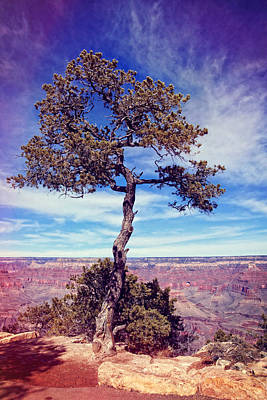 Photograph - On The Rim by Leda Robertson