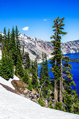 Photograph - On The Rim Of Crater Lake 2 by Storm Smith