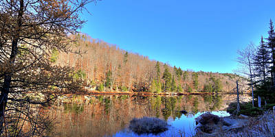 Photograph - On The Shore Of Bald Mountain Pond by David Patterson