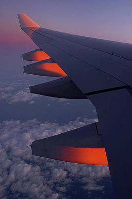 Advertising Archives - On the wing 2 by Colin Shearer