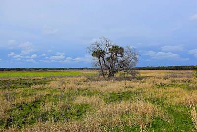 Photograph - Open Fields by Florene Welebny