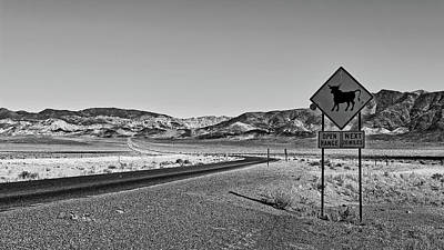 Photograph - Open Range by Sofielayla Thal