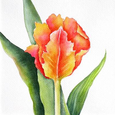 Orange Tulip Painting - Orange Flame by Deborah Ronglien