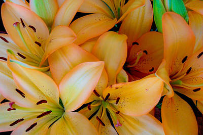 Photograph - Orange Lilies by Mark Barclay