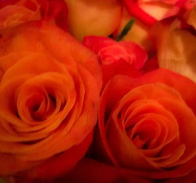 Digital Art - Orange Rose by Gayle Price Thomas