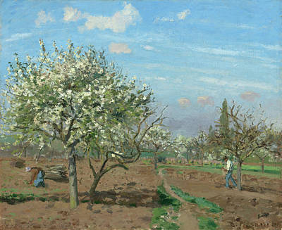 Working Painting - Orchard In Bloom, Louveciennes by Camille Pissarro