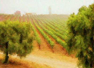 Grapevine Digital Art - Orcutt Vineyard by Patricia Stalter