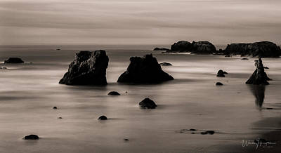 Photograph - Oregon Coast - 8710-b,sw by Wally Hampton