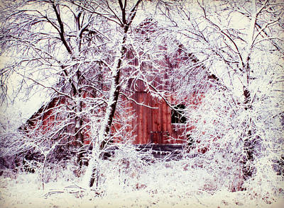 Country Cottage Photograph - Our Barn  by Julie Hamilton