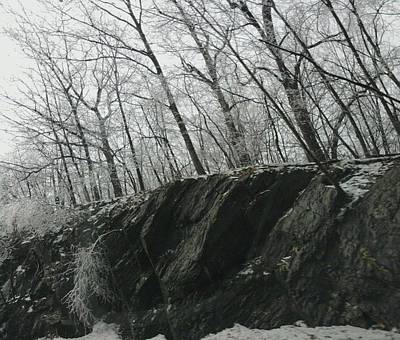 Art Print featuring the photograph Out Of The Rocks by Ellen Levinson