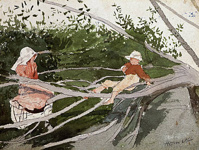 Winslow Homer Drawing - Out On A Limb by Winslow Homer