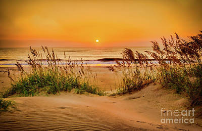 Photograph - Outer Banks Sand Dune Sunrise by Dan Carmichael