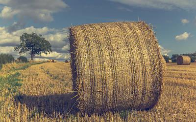 Bale Photograph - Outstanding In It's Field by Chris Fletcher