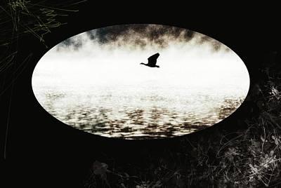 Geese Photograph - Overflight by Jaroslav Buna