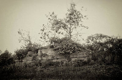 Photograph - Overgrown by Marvin Borst