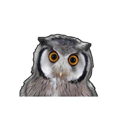 Digital Art - OWL by Roger Lighterness