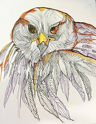 Drawing - Owl by Rosalinde Reece