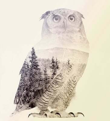 Digital Art - Owl by Taylan Apukovska