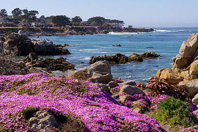 Photograph - Pacific Grove by Derek Dean