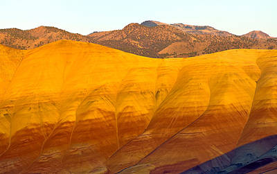 Comedian Drawings - Painted Hills Unit in the John Day Fossil Beds National Monument by James Little