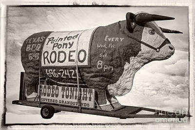 Photograph - Painted Pony Rodeo Lake George by Edward Fielding