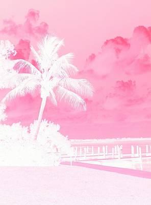 Photograph - Palm Blush by Florene Welebny